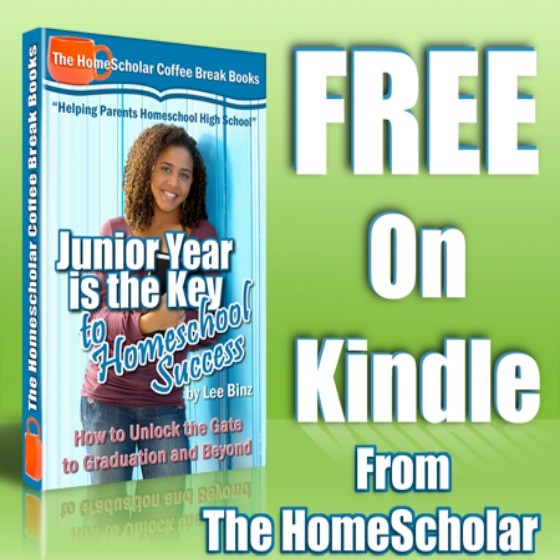 [Free Kindle] Junior Year is the Key to High School Success